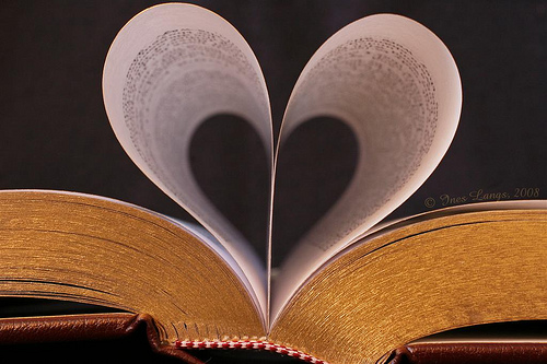 book-with-heart-pages-5-2-ll-love-of-books-blog